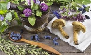 Kosmetika a vitální houby